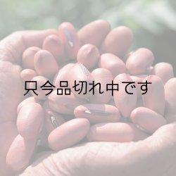 画像4: 純国産(鹿児島) 薩摩なた豆 元気茶8包入
